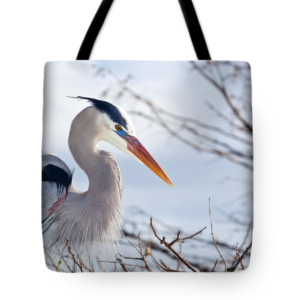 Great Blue Heron At Wakodahatchee Wetlands Tote Bag