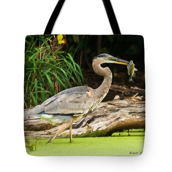 Tote Bag featuring the photograph Great Blue Heron Catch by Edward Peterson
