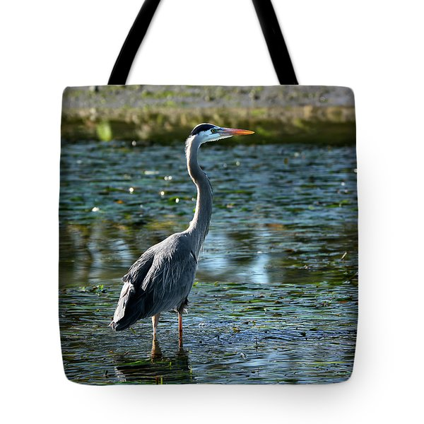 Tote Bag featuring the photograph Great Blue Heron Catching The Light by Susan Wiedmann
