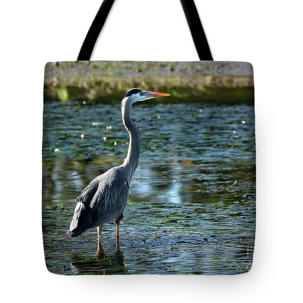 Great Blue Heron Catching The Light Tote Bag