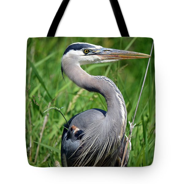 Great Blue Heron Close-up Tote Bag