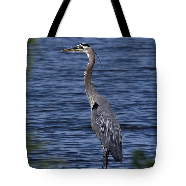 Great Blue Heron Dmsb0001 Tote Bag