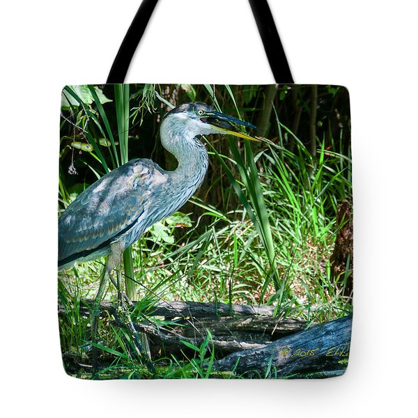 Tote Bag featuring the photograph Great Blue Heron Fish Meal by Edward Peterson