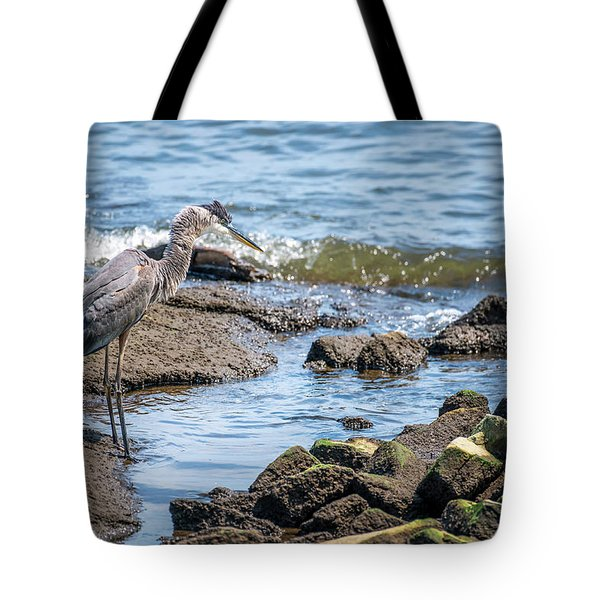 Great Blue Heron Fishing On The Chesapeake Bay Tote Bag