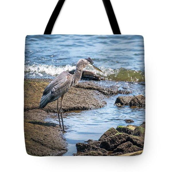 Great Blue Heron Fishing On The Chesapeake Bay Tote Bag