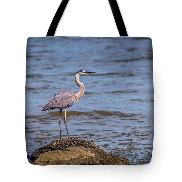 Great Blue Heron Gaze Tote Bag