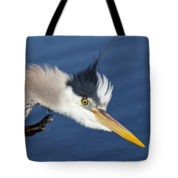 Great Blue Heron - Good Scratch Tote Bag