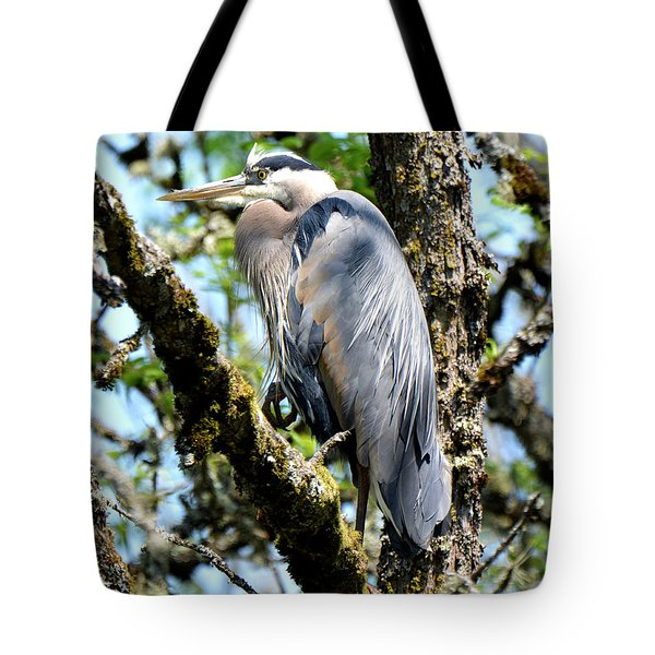 Great Blue Heron In A Tree Tote Bag