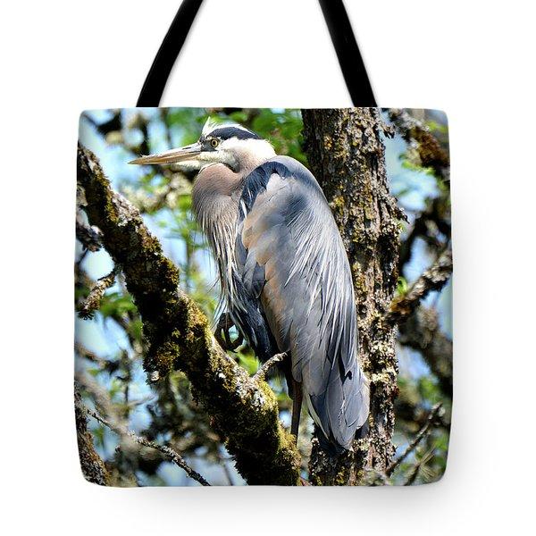 Great Blue Heron In A Tree Tote Bag