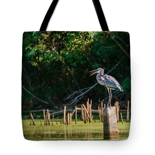 Tote Bag featuring the photograph Great Blue Heron Mouth by Edward Peterson