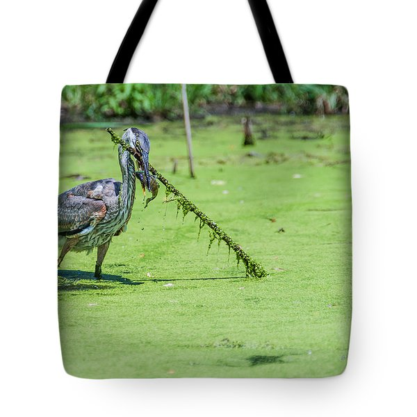 Tote Bag featuring the photograph Great Blue Heron Mouthful by Edward Peterson