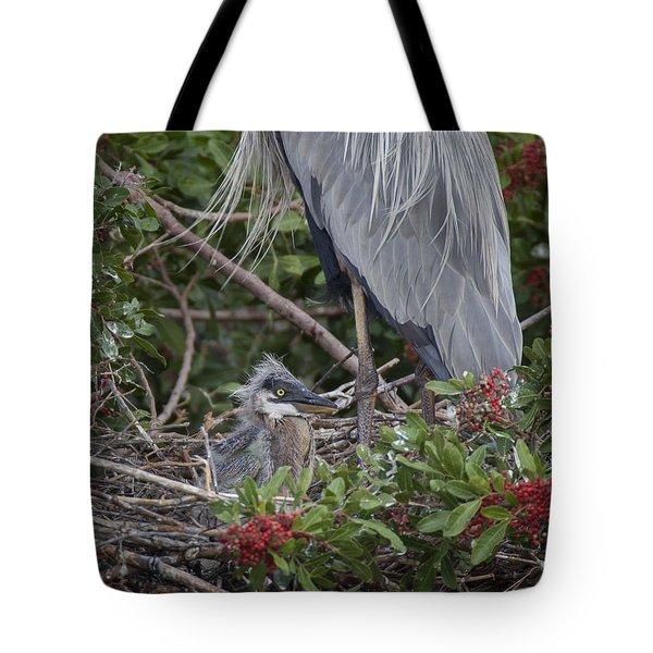 Great Blue Heron Nestling Tote Bag