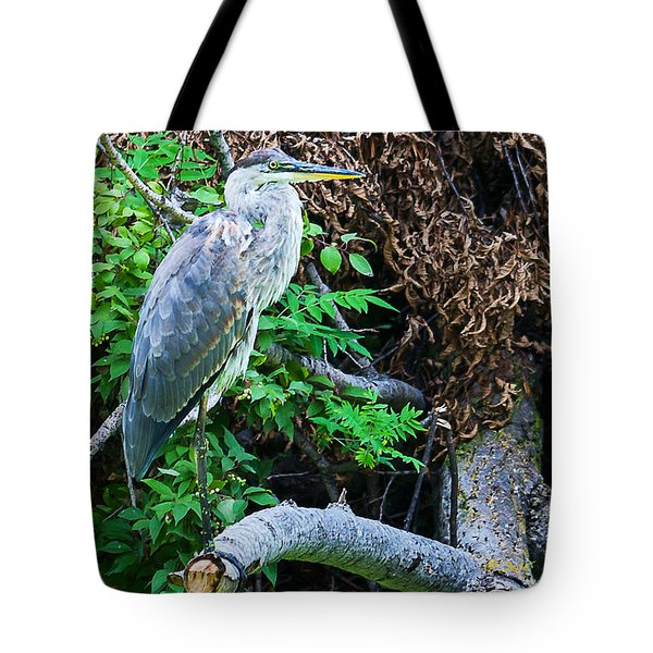Tote Bag featuring the photograph Great Blue Heron Perch by Edward Peterson