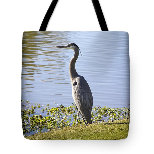 Tote Bag featuring the photograph Great Blue Heron by Phyllis Denton