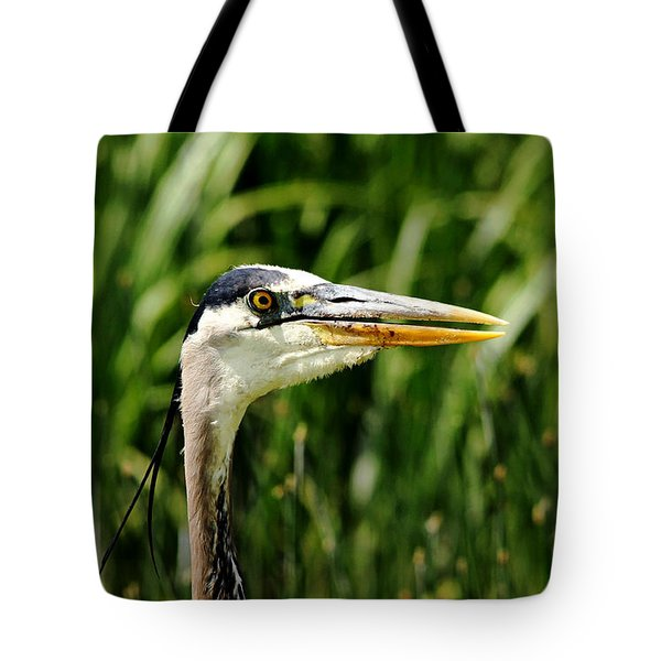 Tote Bag featuring the photograph Great Blue Heron Portrait by Debbie Oppermann