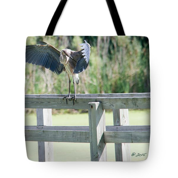 Tote Bag featuring the photograph Great Blue Heron Preening by Edward Peterson