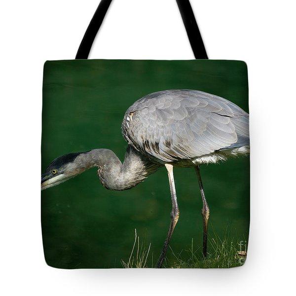 Great Blue Heron Series Tote Bag