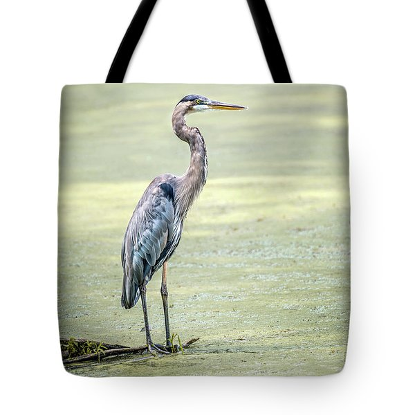 Great Blue Heron Standing In A Marsh Tote Bag