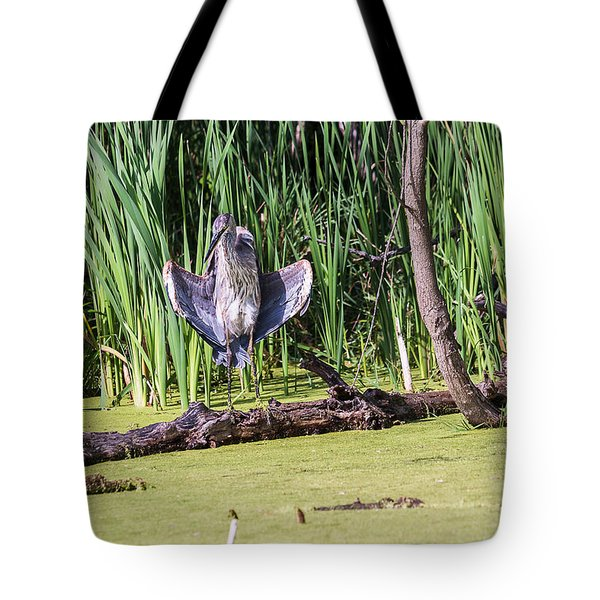 Tote Bag featuring the photograph Great Blue Heron Sunning by Edward Peterson