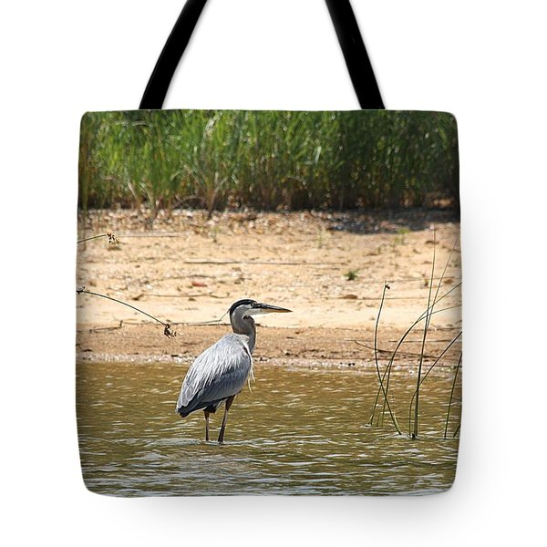 Tote Bag featuring the photograph Great Blue Heron Wading by Sheila Brown