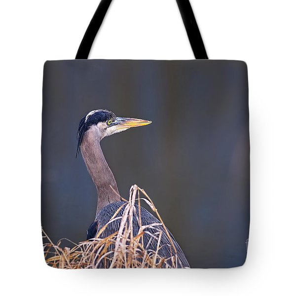 Tote Bag featuring the photograph Great Blue Heron Waiting by Sharon Talson