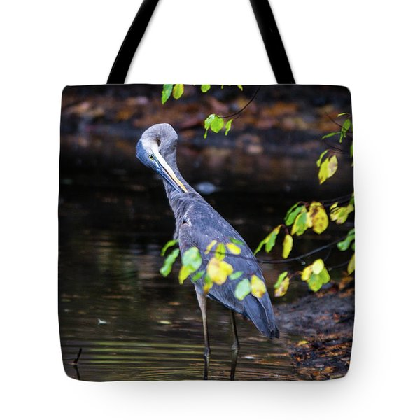 Great Blue Heron With An Itch Tote Bag