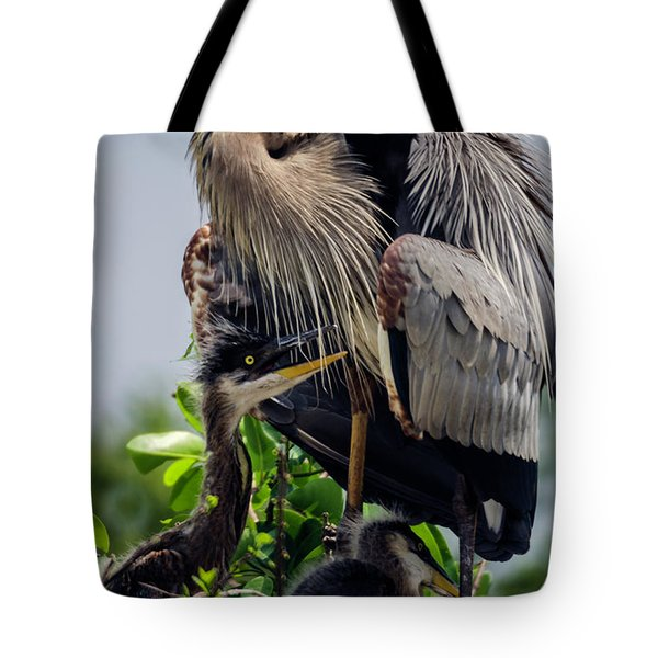 Great Blue Heron With Babies Tote Bag