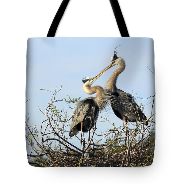Great-blue Herons On Nest At The Venice Rookery, Florida Tote Bag