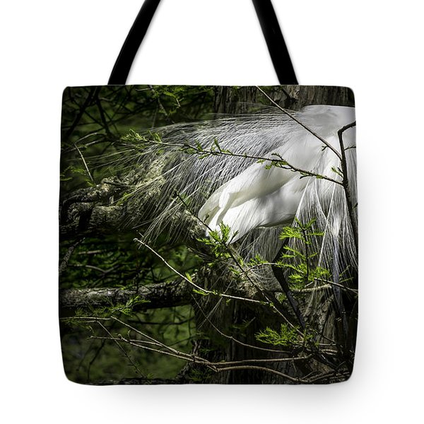 Great Egret #2 Tote Bag