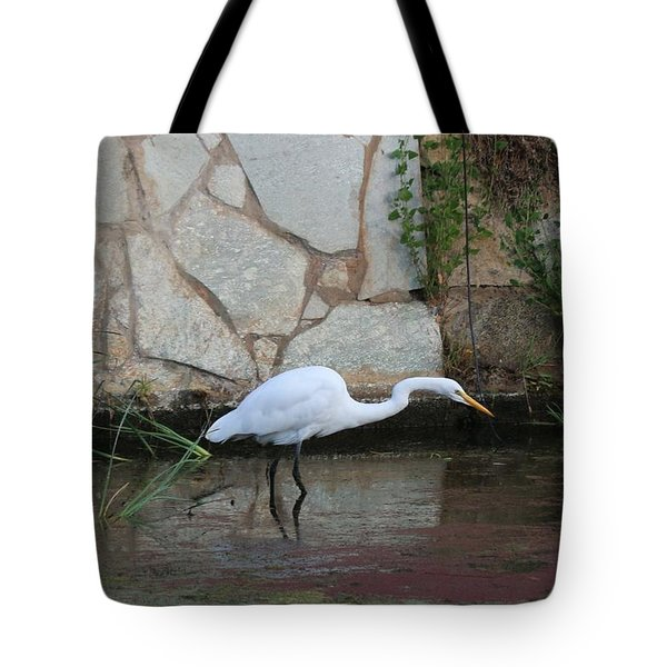 Great Egret - 4  Tote Bag by Christy Pooschke