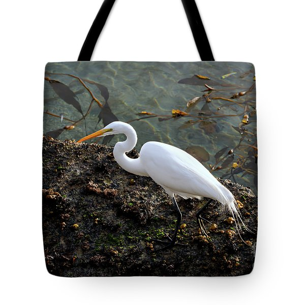 Great Egret At A Low Tide Tote Bag