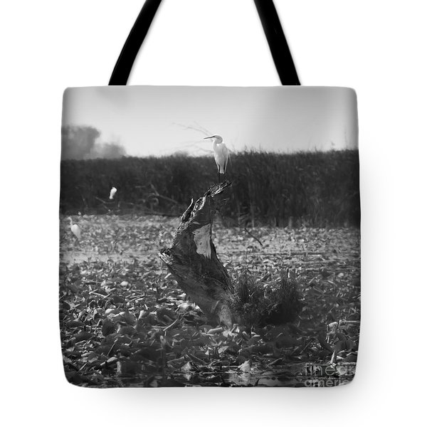 Tote Bag featuring the photograph Great Egret At Horicon Marsh  by Ricky L Jones