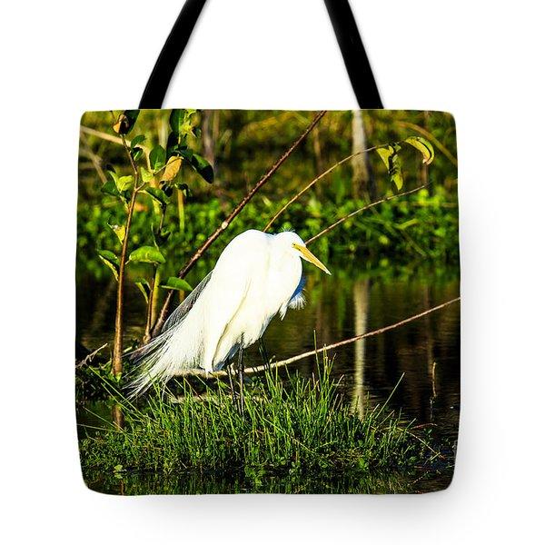 Great Egret At Wakodahatchee Tote Bag