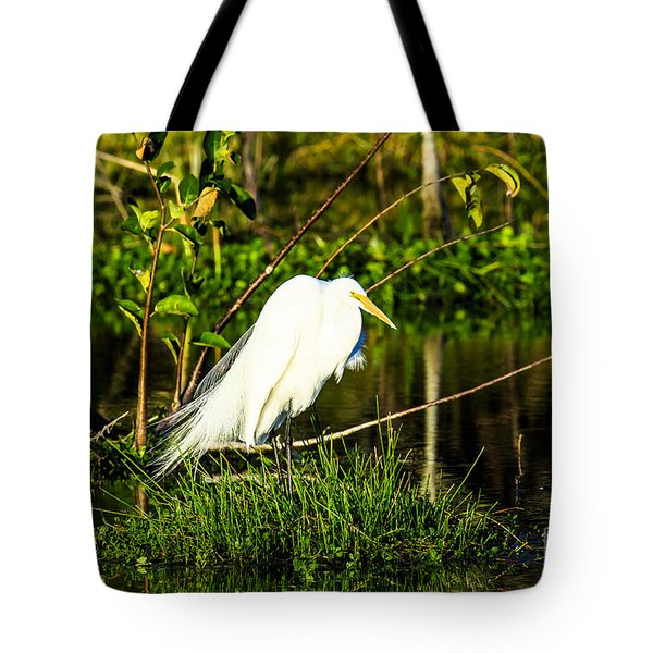 Great Egret At Wakodahatchee Tote Bag