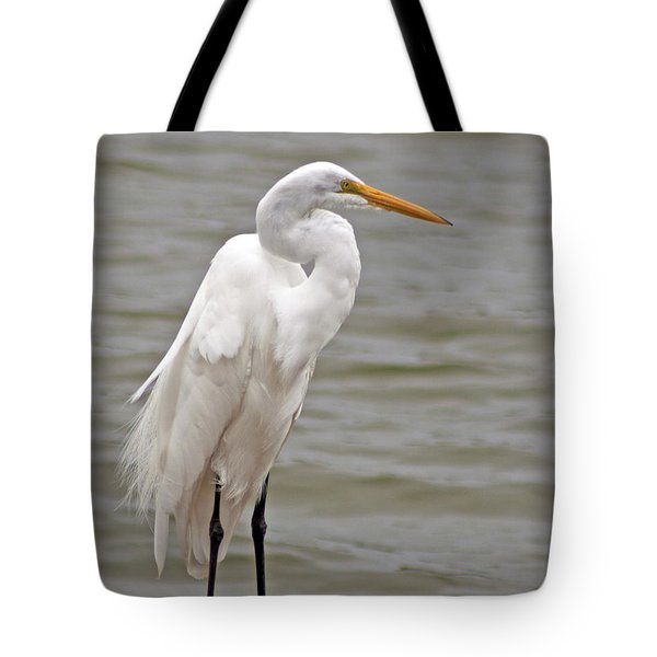 Tote Bag featuring the photograph Great Egret by Bill Barber