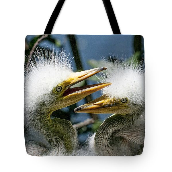 Tote Bag featuring the photograph Great Egret Chicks by Brian Tarr