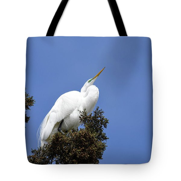 Great Egret Tote Bag by Gary Wightman