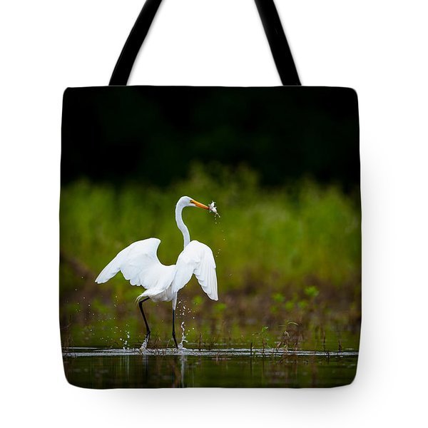 Great Egret, Great Fisherman Tote Bag