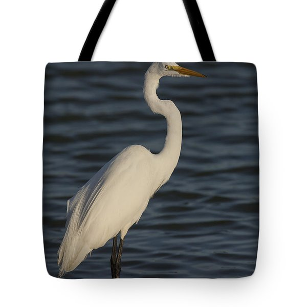 Great Egret In The Last Light Of The Day Tote Bag