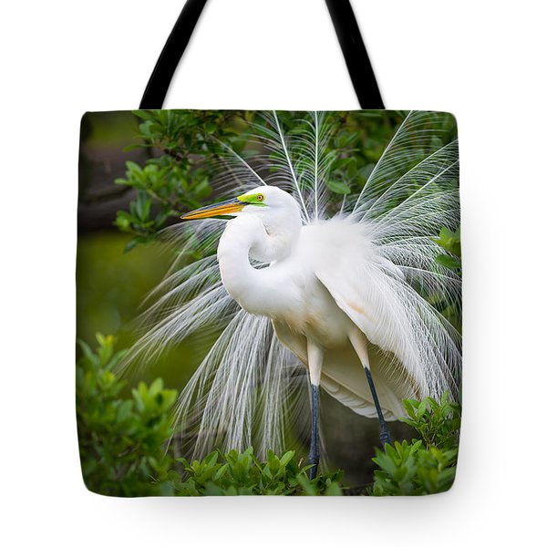 Great Egret Nesting St. Augustine Florida Coastal Bird Nature Tote Bag