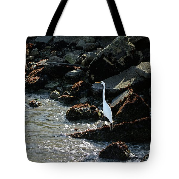 Tote Bag featuring the photograph Great Egret On Sunny Seaside Rocks by Susan Wiedmann