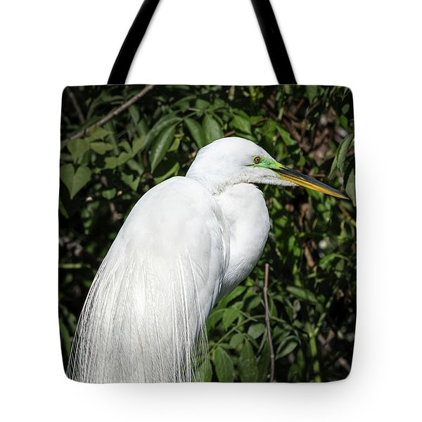 Tote Bag featuring the photograph Great Egret Portrait One by Steven Sparks