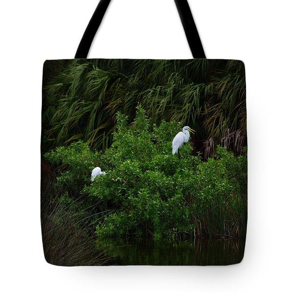Great Egrets Tote Bag