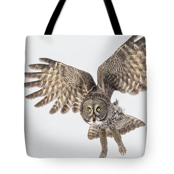 Great Grey Flight  Tote Bag