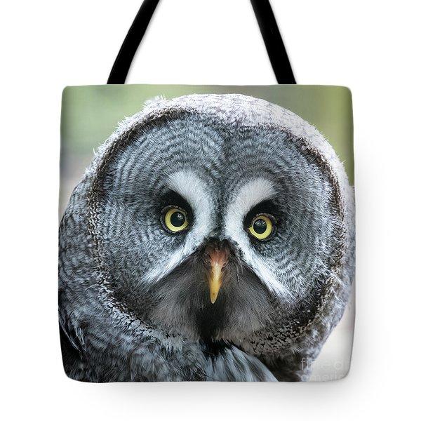 Great Grey Owl Closeup Tote Bag