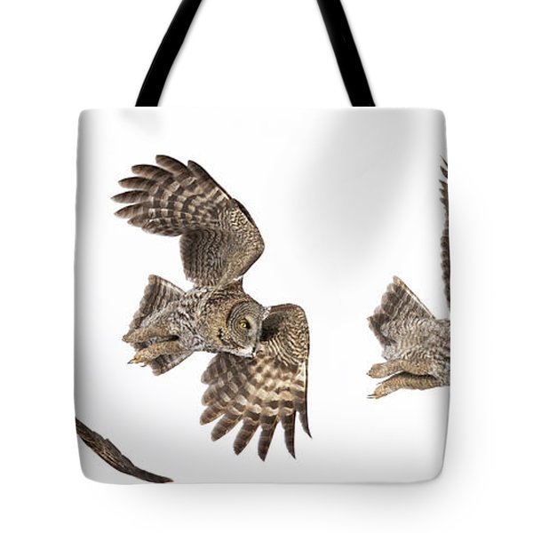 Tote Bag featuring the photograph Great Grey Owl Hunting by Mircea Costina Photography