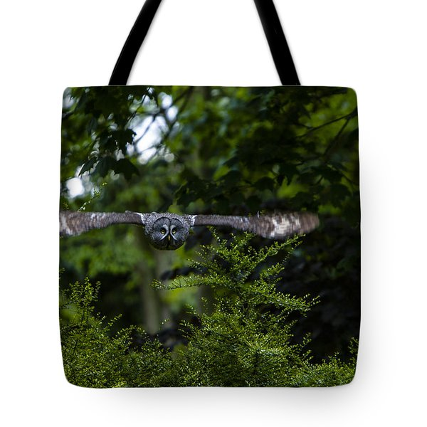 Great Grey Owl In Flight Tote Bag