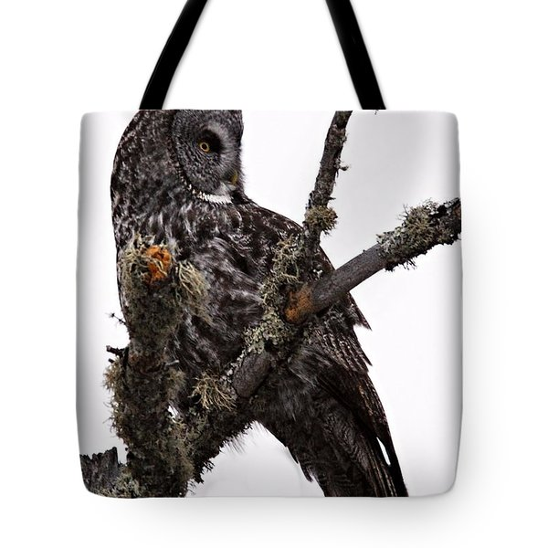 Great Grey Owl Tote Bag by Larry Ricker