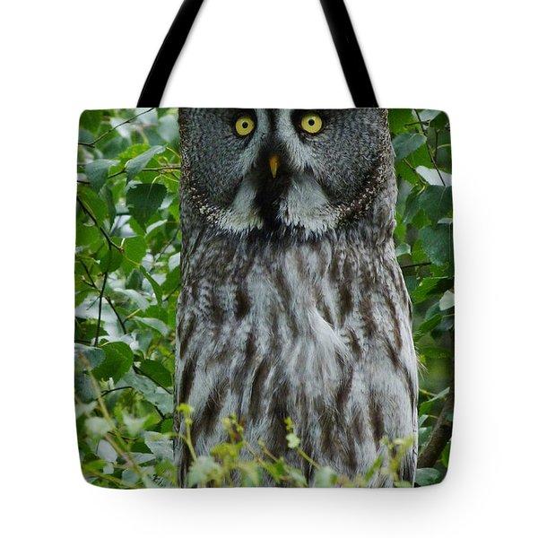 Great Grey Owl - Surprised Tote Bag