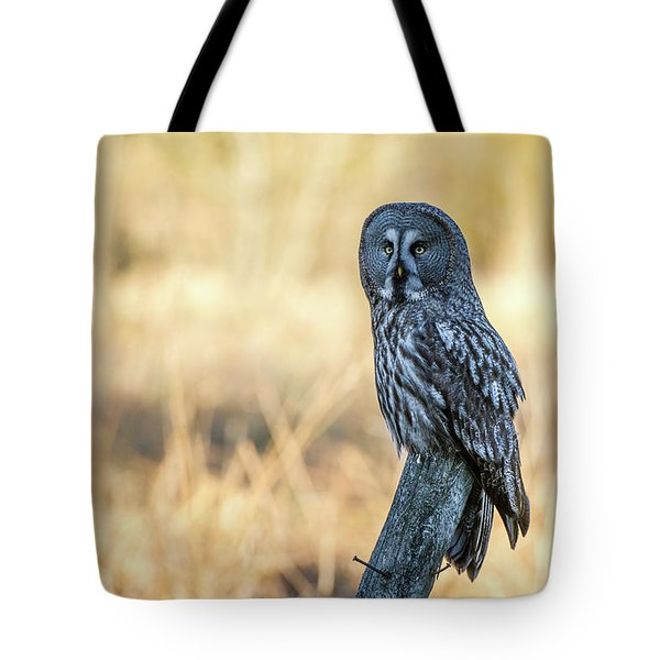 Great Grey Perching Tote Bag by Torbjorn Swenelius